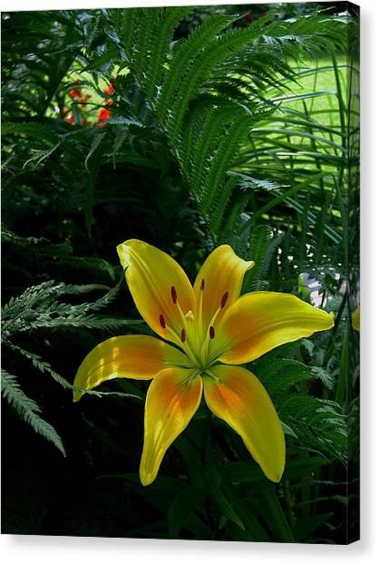 Bloomin Wonder Canvas Print by Larry Jones