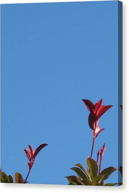 Blooming Leaves Canvas Print