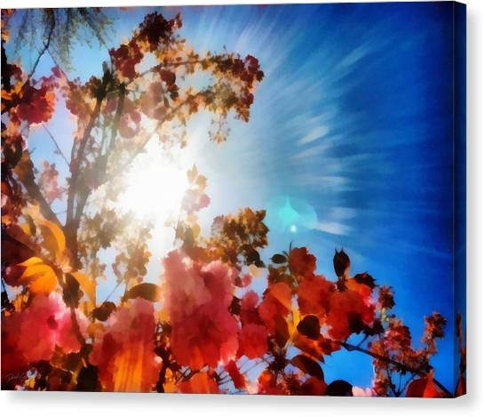 Blooming Sunlight Canvas Print
