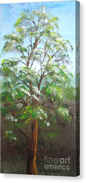 Blooming Tree Canvas Print by Roni Ruth Palmer