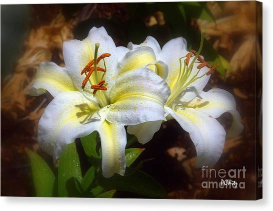 Bloom'n Lilies Canvas Print