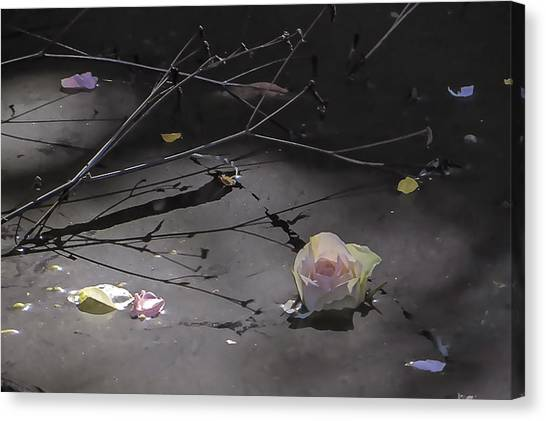 Blossom Rain 17 Canvas Print by Georg Kickinger