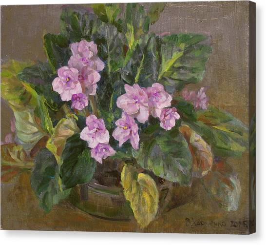 Blossoming Violet Canvas Print by Victoria Kharchenko