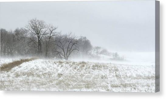 Blowing Snow Over Fields And Forest Canvas Print