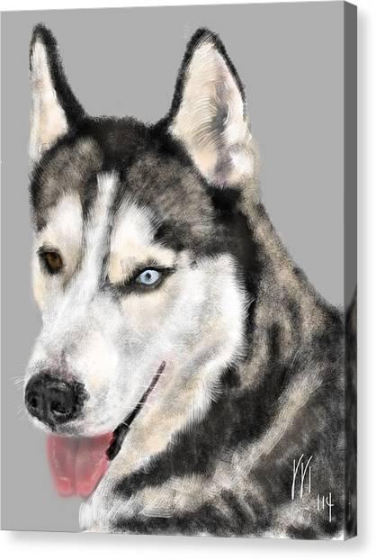 Huskie Canvas Print - Blue And Brown Eyed Huskie by Lois Ivancin Tavaf