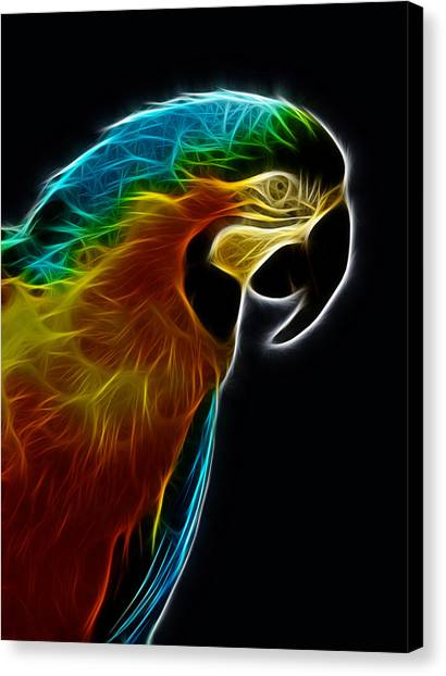 Blue And Gold Macaw Frac Canvas Print