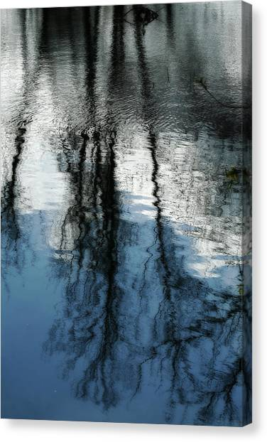 Blue And White Reflections Canvas Print