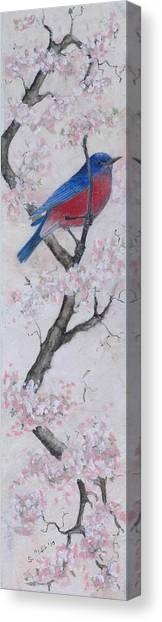 Blue Bird In Cherry Blossoms 2 Canvas Print by Sandy Clift