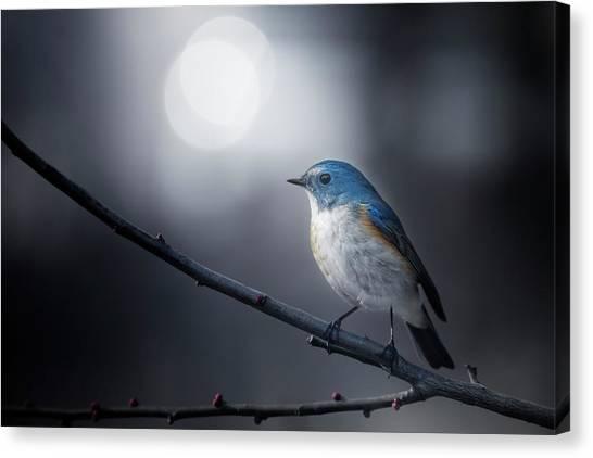 Branch Canvas Print - Blue Bird by Takashi Suzuki