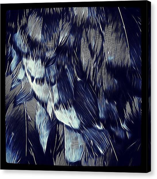 Ravens Canvas Print - Blue, Black, Bird! #blue #black by Robert Campbell
