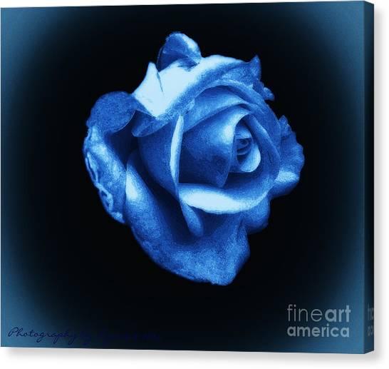 Blue Blue Rose Canvas Print