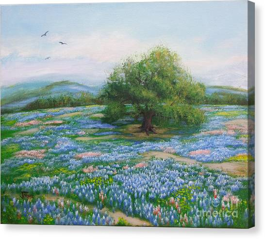 Blue Bonnet Field Canvas Print