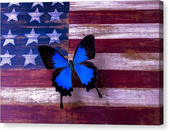 Gay Flag Canvas Print - Blue Butterfly On American Flag by Garry Gay