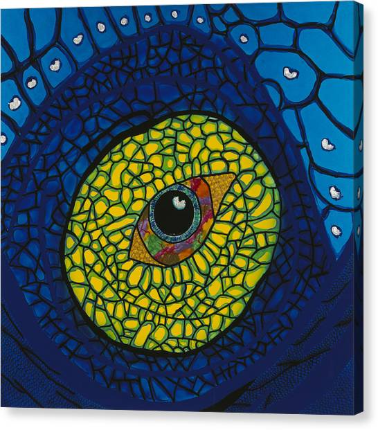 Blue Eye Canvas Print by Patrick OLeary