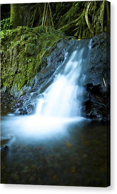 Blue Falls Off The Beaten Path Canvas Print