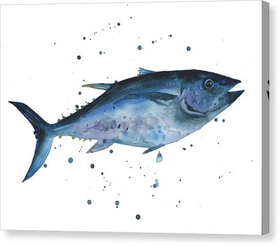 Fish Canvas Print - Blue Flash Tuna by Alison Fennell