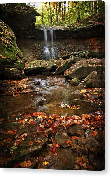 Blue Hen Falls In Autumn Canvas Print