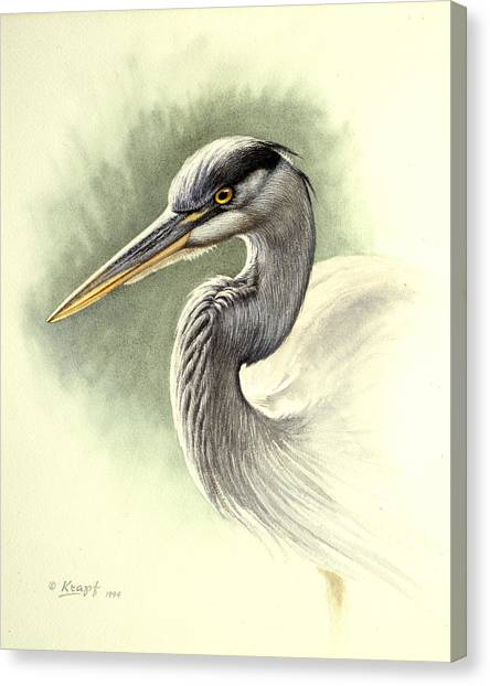 Heron Canvas Print - Blue Heron   by Paul Krapf