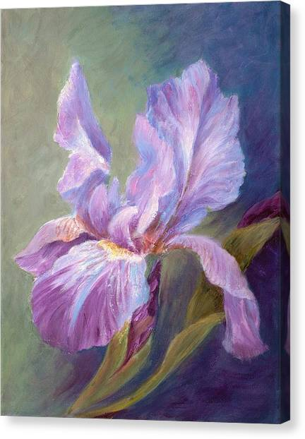 Blue Indigo Iris Canvas Print