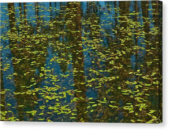 Blue Lake Reflections Canvas Print