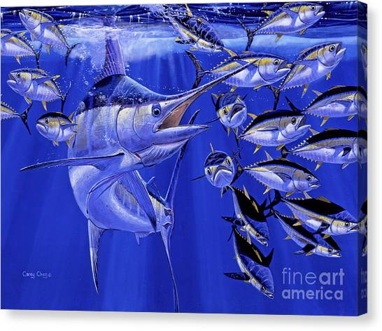 Miami Dolphins Canvas Print - Blue Marlin Round Up Off0031 by Carey Chen