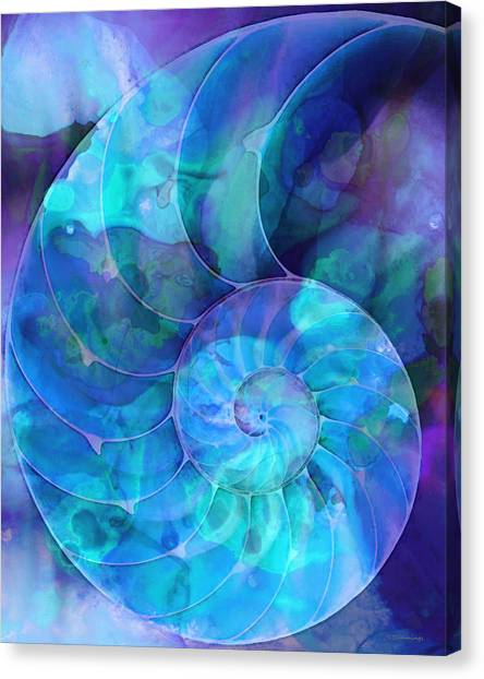 Florida House Canvas Print - Blue Nautilus Shell By Sharon Cummings by Sharon Cummings