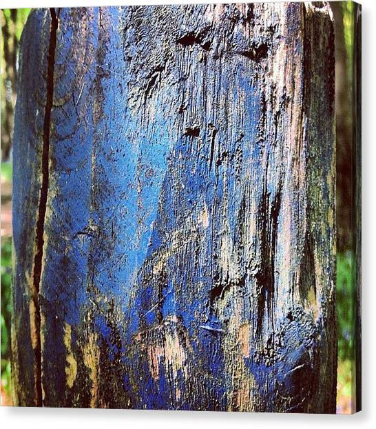 Painted Canvas Print - Blue Painted Wood #iccloseups #painted by Nic Squirrell