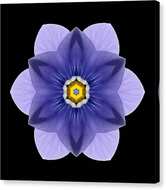 Blue Pansy I Flower Mandala Canvas Print