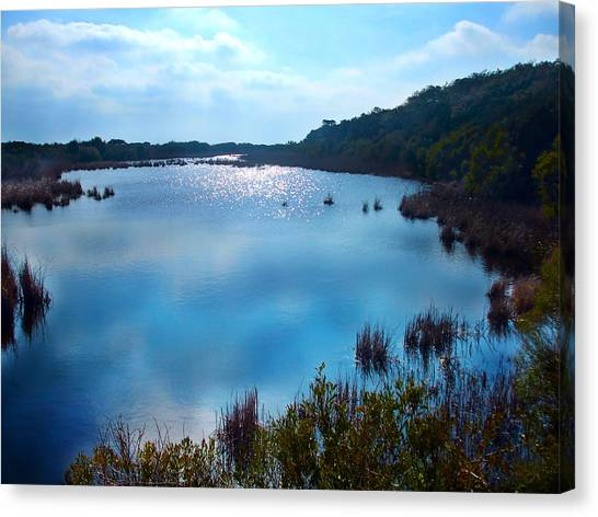 South Carolina Canvas Print - Blue Pond by Meagan Johnson