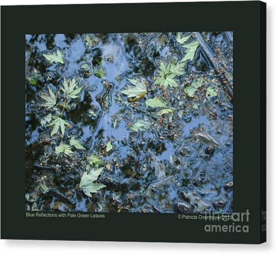 Blue Reflections With Pale Green Leaves Canvas Print