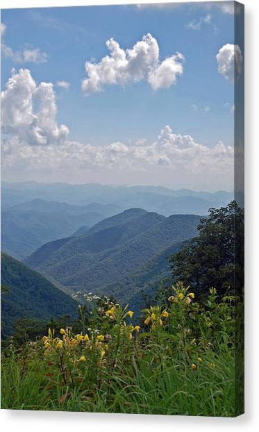Blue Ridge Blossoms Canvas Print by Mary Anne Baker