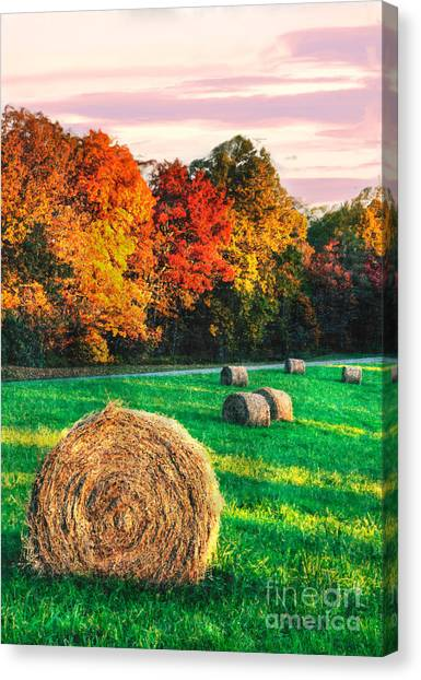 Groundhogs Canvas Print - Blue Ridge - Fall Colors Autumn Colorful Trees And Hay Bales II by Dan Carmichael