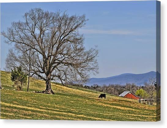Blue Ridge Farm Canvas Print