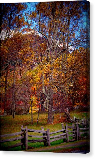 Blue Ridge Fenced In Fall Canvas Print