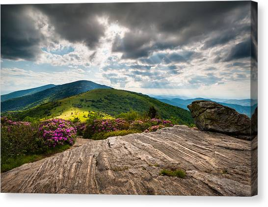 Appalachian Canvas Print - Blue Ridge Mountains Landscape - Roan Mountain Appalachian Trail Nc Tn by Dave Allen
