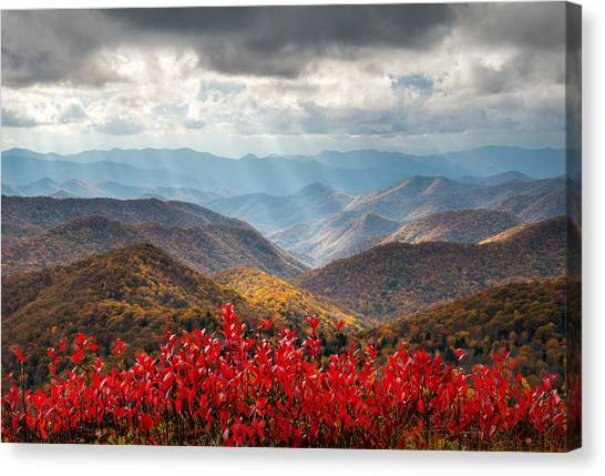 Blue Ridge Parkway Canvas Print - Blue Ridge Parkway Fall Foliage - The Light by Dave Allen