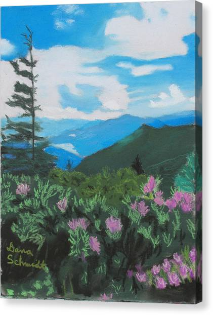 Blue Ridge Parkway In June Canvas Print