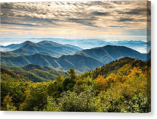 Blue Ridge Parkway Canvas Print - Blue Ridge Parkway Sunrise - Light Lines And Leaves by Dave Allen