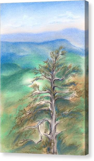 Canvas Print featuring the pastel Blue Ridge Pine by MM Anderson