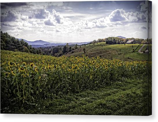Blue Ridge View Canvas Print
