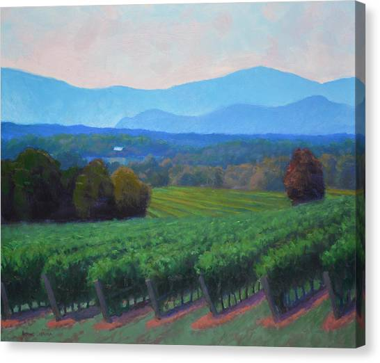 Salamanders Canvas Print - Blue Ridge Views by Armand Cabrera