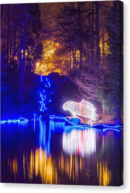 Blue River - Crop Canvas Print