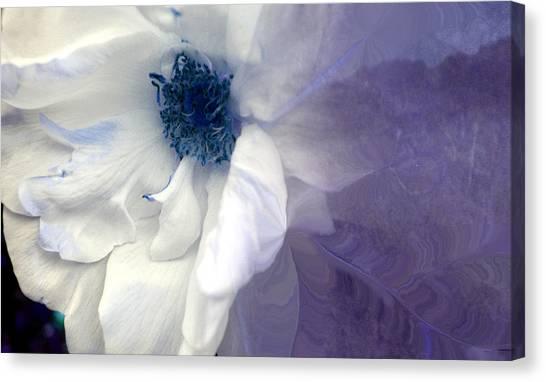 Blue Rose Canvas Print