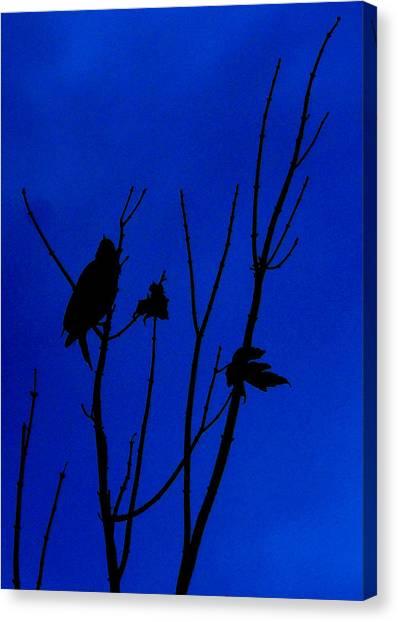 Blue Silhouette Canvas Print by Julie Cameron