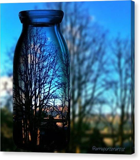 Sunny Canvas Print - Blue Skies Bottled Winter In Oregon by Anna Porter
