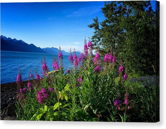 Blue Skies Seward Alaska Canvas Print