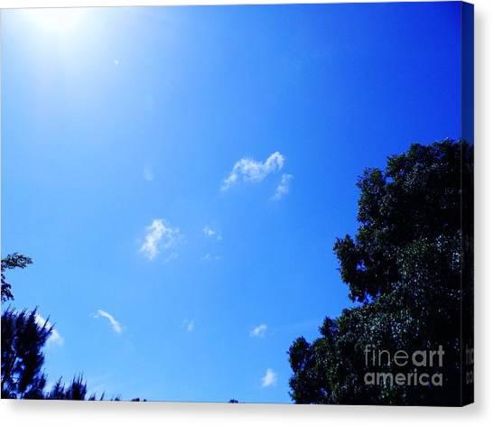Blue Sky And Sunshine Canvas Print