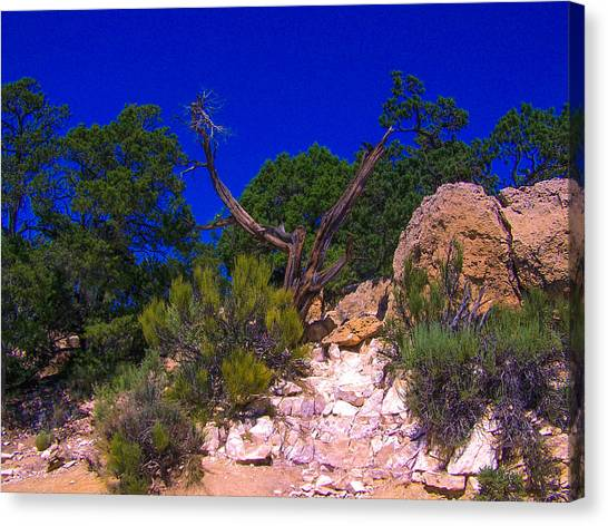 Blue Sky Over The Canyon Canvas Print
