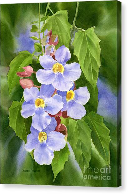 Blue Sky Vine With Background Canvas Print by Sharon Freeman