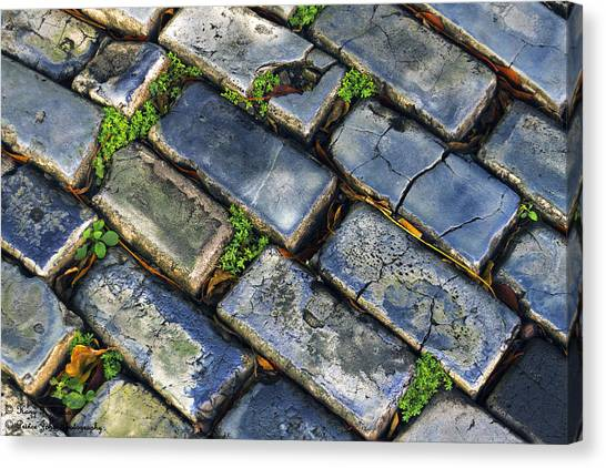 Blue Stone  Canvas Print